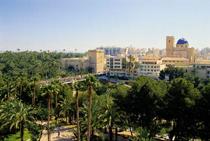 Elche, en Alicante
