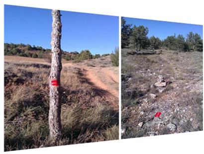 Alguna de las señales que el viajero puede encontrar en el tramo soriano Berlanga de Duero-Brías