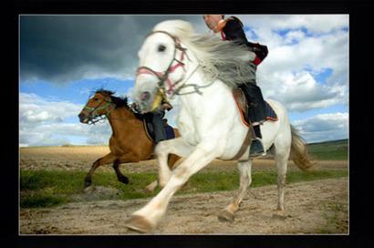 Un momento de la Caballada de Atienza. La imagen ganó el 2º premio del V Concurso Fotográfico Camino del Cid. Autor: Jesús de los Reyes Martínez