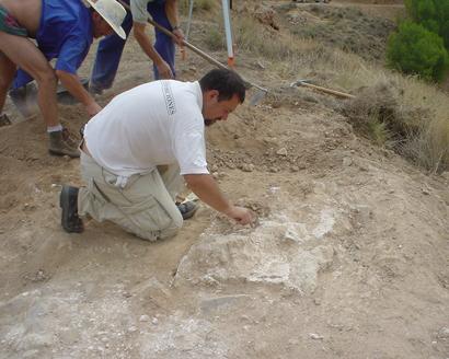Campañas de excavación en Ateca, Zaragoza